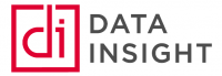 Data Insight Logo